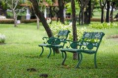 Стул в парке под деревом стоковое фото