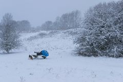 Стул деревянной скамьи в парка крышке совершенно с снегом после вьюги во время праздников рождества зимы, a Стоковое фото RF