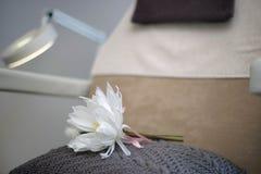 Стул салона красоты с белым цветком и лампой Стоковые Фотографии RF