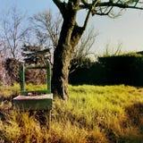 Стул старого винтажного ретро стиля деревянный в поле сельской местности со старым деревом на предпосылке на заходе солнца - затр стоковая фотография rf