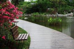 Стул в парке Стоковое Фото