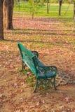 Стул в парке Стоковые Фотографии RF
