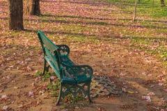 Стул в парке Стоковая Фотография RF