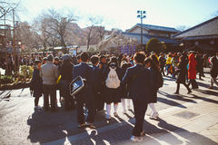 Студенты виска Asakusa Kannon Стоковые Изображения RF