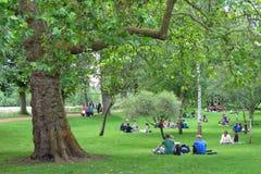 Студенты в парке, Оксфорд, Великобритании. Стоковое Фото