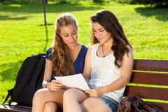Студенты изучая на парке. Стоковые Фотографии RF