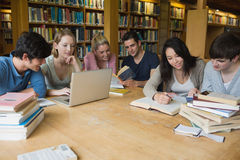 Студенты уча в библиотеке Стоковые Изображения