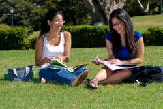 студенты 2 Стоковое фото RF