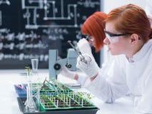 Студент анализируя в химической лаборатории стоковое изображение rf
