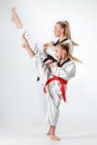 Студия сняла группы в составе дети тренируя боевые искусства карате Стоковые Изображения RF