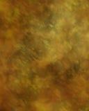 студия 12 фонов Стоковая Фотография RF