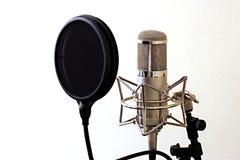Студия mic стоковое изображение rf
