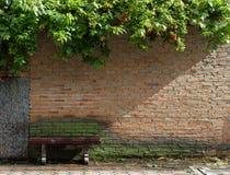 Стул и стена Стоковые Фотографии RF