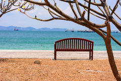 Стул с деревом океаном Стоковая Фотография