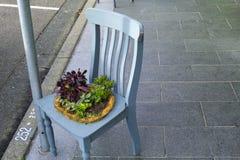 Стул с цветками на улице стоковая фотография rf