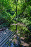 стыковка деревянная Стоковая Фотография