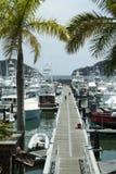 Пристань Марины курорта Костарика Стоковые Фото