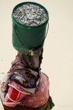 суахили zanzibar повелительницы острова Стоковая Фотография RF