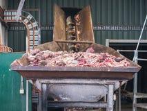 Субпродукты скотобойни для обрабатывать стоковые фотографии rf