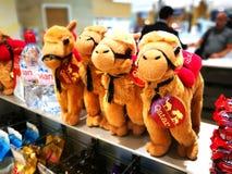 сувенирный магазин в международном аэропорте Hamad международный аэропорт Дохи, столицы стоковая фотография