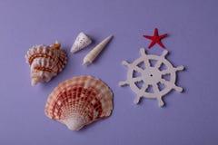 Сувениры моря лета Стоковые Изображения