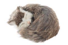 Сувенир кота Стоковые Фотографии RF