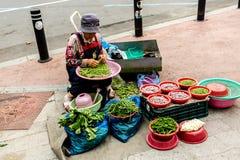 Сувон, Южная Корея - 25-ое июня 2017: Женщина поставщика продавая овощи и плоды в уличном рынке в центре города в Сувоне стоковое изображение rf