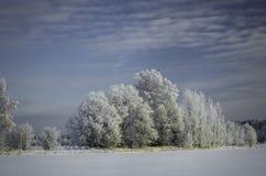 Сугробы зимы, русская зима Стоковая Фотография RF