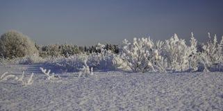 Сугробы зимы, русская зима Стоковое фото RF