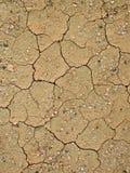 суглинок земли детали сухой Стоковое Изображение RF