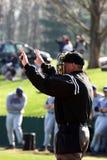 судья на вышке плиты бейсбола Стоковое Изображение
