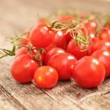 Суккулентные зрелые красные томаты вишни Стоковое Изображение RF