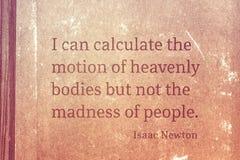 Сумасшествие людей Ньютона стоковая фотография rf