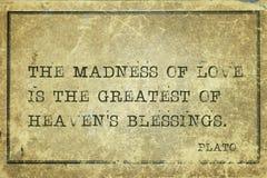 Сумасшествие Платон влюбленности стоковое изображение