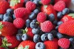 сумасшествие ягоды Стоковая Фотография RF