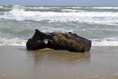 Суматошные волны, голубое море Стоковые Фотографии RF