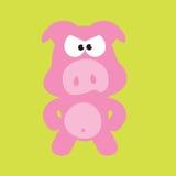 сумашедшие swine свиньи Стоковая Фотография RF