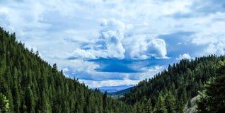 Сумашедший след Steamboat Springs Колорадо заводи Стоковые Фотографии RF
