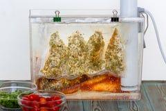 3 сумки варить sous-vide куриной грудки стоковые фото