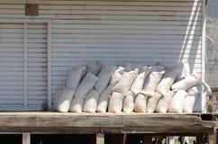 Сумки семени Стоковое Изображение RF