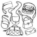 сумки Стоковое Фото