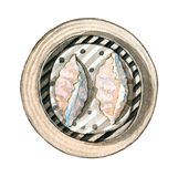 Сумма азиатской еды акварели тусклая, взгляд сверху Стоковая Фотография