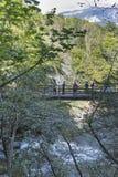 Сумма водопада, ущелье Vintgar, национальный парк Triglav Стоковые Изображения RF