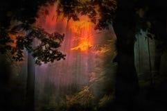 Сумрак леса иллюстрация штока