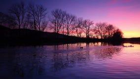 Сумрак на реке Berounka сток-видео