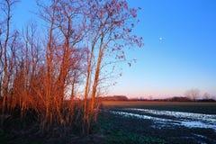 Сумрак над сельской местностью стоковое изображение rf