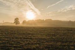 Сумрак на ферме Стоковое фото RF