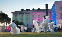 сумрак танцульки Стоковые Фото