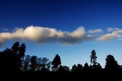сумрак silhouetted валы Стоковые Фото