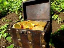 Сундук с сокровищами Стоковая Фотография RF